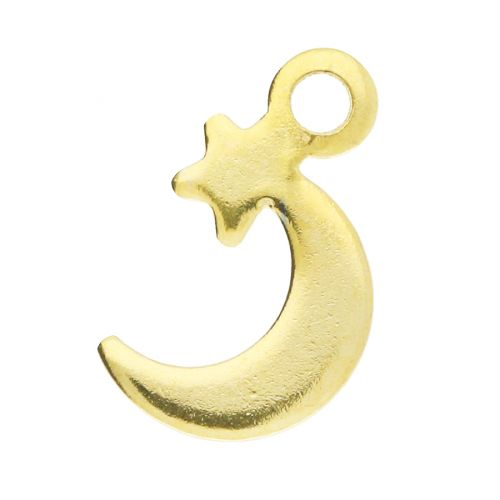 Moon and star / pendant / surgical steel / 12x7mm / gold / hole 1.5mm / 2pcs