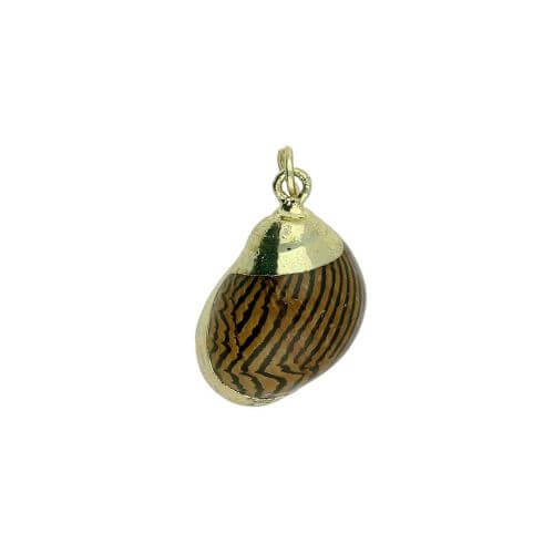 Shell with gold decoration / pendant / brown, cream / 20x12x10mm / 1pc