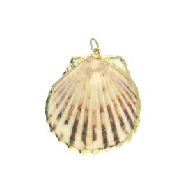 Shell with gold decoration / pendant / cream / 46x43x9mm / 1pcs