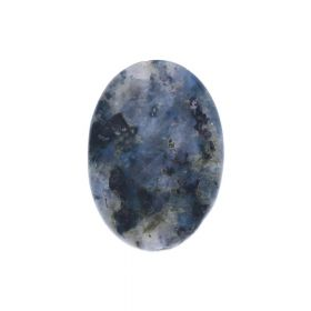 Larvikite / flat oval / faceted / 14x10x5mm / 1pcs