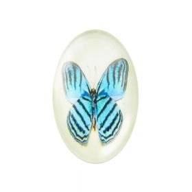Glass cabochon with graphics oval 18x25mm PT1521 / blue / 2pcs