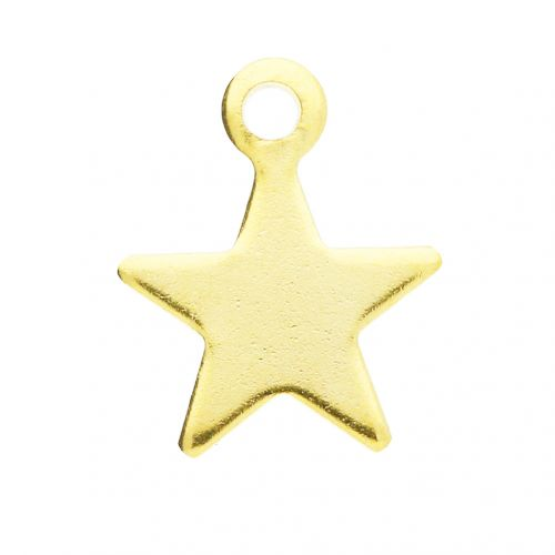 Star / pendant / surgical steel / 11x9.5x1mm / gold / 2pcs