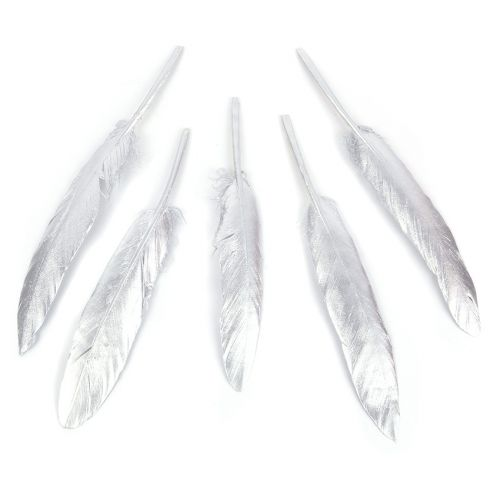 Shiny Silver Craft Feathers 120mm Pk5