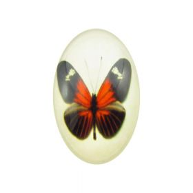 Glass cabochon with graphics oval 13x18mm PT1526 / black and red / 2pcs