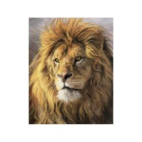 Diamond painting / mosaic / lion / 40x50cm / 1pcs