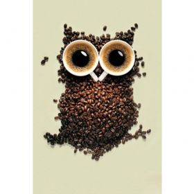 Diamond painting / mosaic / coffee owl / 20x25cm / 1pcs