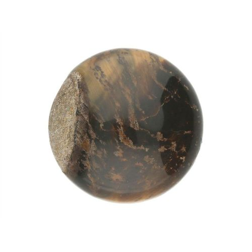 Tiger's Eye / cabochon / round / 16x16x6mm / 1pcs