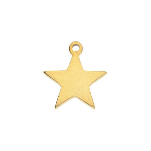 Star / charm / surgical steel / 11x10mm / gold / 2pcs